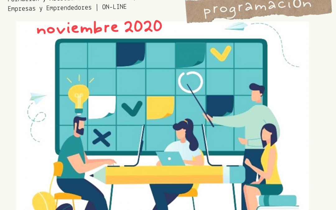 Formación Gratuita para Empresas y Emprendedores | ON-LINE    /   NOVIEMBRE  2020
